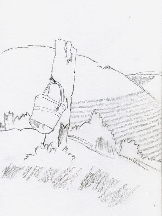 635948519918255744-The-Bucket-Hillside.jpg