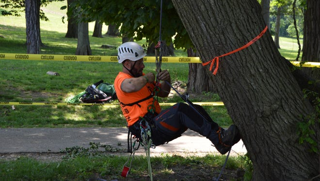 Chris Coates, a Maryland arborist, begins is ascent up a tree at the New York State Tree Climbing Championship in Tarrytown, June 10, 2017.