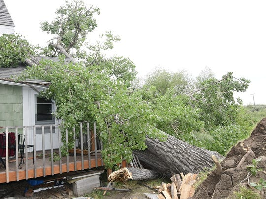 An uprooted tree rests against a home along Highway