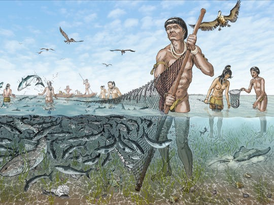 """Calusa, """"People of the Estuary"""" illustration, provided by William H. Marquardt, Ph.D."""