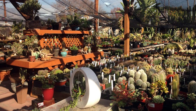 The California Cactus Center in Pasadena   specializes in drought-tolerant succulents and cactuses.