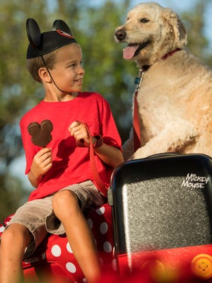 Walt Disney World Resort now welcomes guests and their dogs to four select properties.