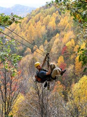 Want to experience -- not just see -- the fall foliage? Head to Barnardsville's Navitat for zipline canopy tours.