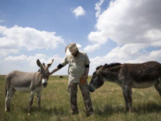 636351071351207438-donkey-defenders.JPG