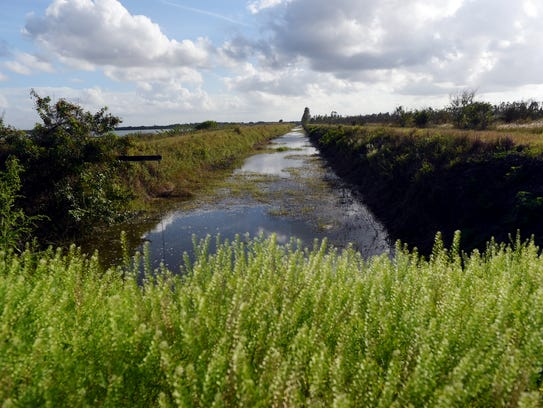 The McCarty Ranch Water Quality project will allow the city utility to pump peak flows onto the McCarty Ranch property, where Mother Nature will clean the water and ultimately provide another source of drinking water for Port St. Lucie.