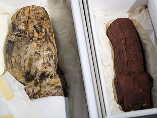 Two Olmec finds in protective boxes are seen during