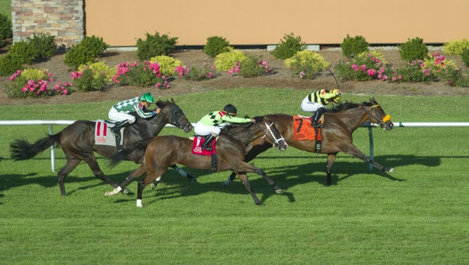 """Lovely Loyree (7) leads the pack to the line to win The 9th running of """"The Indiana General Assembly Distaff"""", a 1 1/16-mile race on turf. Cash Control (1) placed, while Annulment (11) showed. The 22nd running of the Indiana Derby took place Saturday, July 16, 2016, at Indiana Grand Racing and Casino, in Shelbyville."""