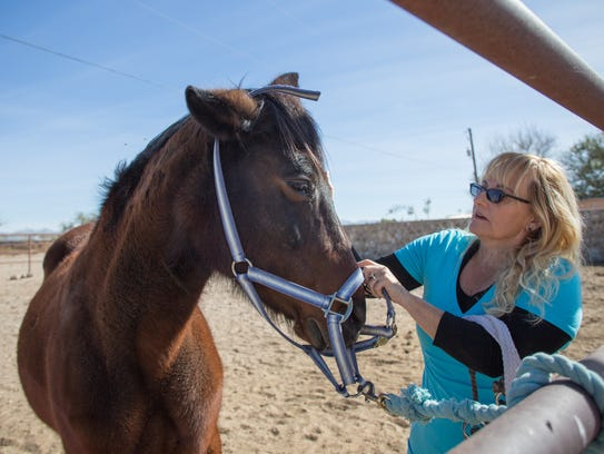 Horse Specialist Dianna Yielding bonds with Sara the horse at Equine Assisted Programs of Southern New Mexico, Monday, Nov. 20, 2017.