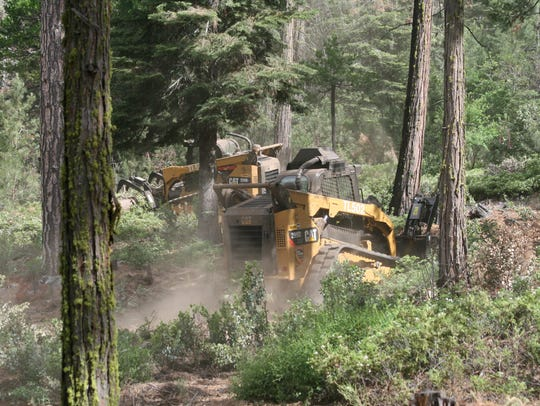 Bulldozers remove trees in Fresno County.