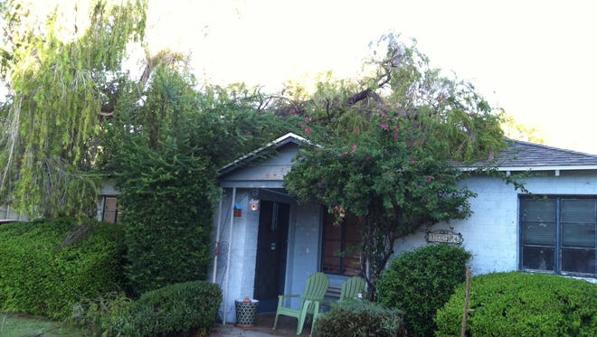 During Saturday'??s storm, a huge tree branch broke off a bottle brush tree and landed on a Phoenix house.
