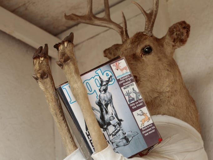 A deer reads a magazine while sitting in an outhouse