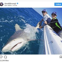President Trump's grandson reels in a shark and we get to see it on Instagram