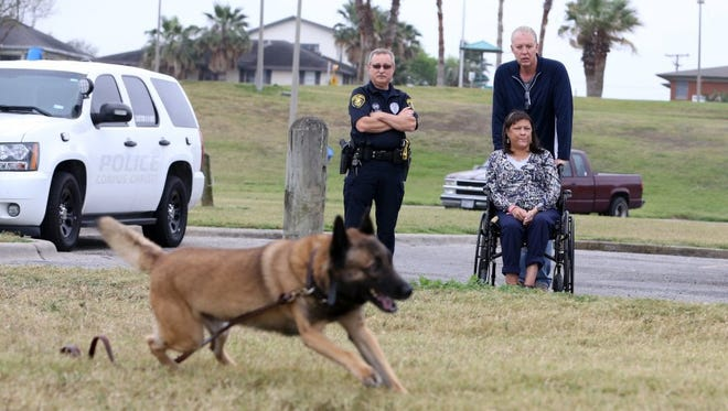 Christi Police Department Senior Officer Chris Lynch (from left) and Scott and Kim Parker watch as Indy, a K-9 dog, participates in a training at Cole Park on Tuesday, March 8, 2016.