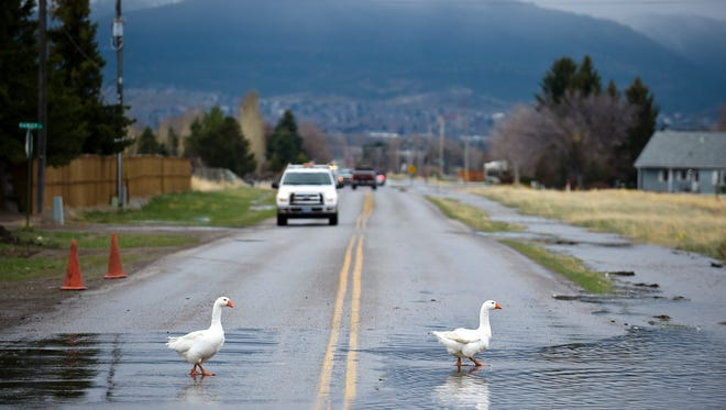 A scene from the Helena Valley on Monday, where Ten Mile Creek jumped its banks and caused flooding in some residential areas.