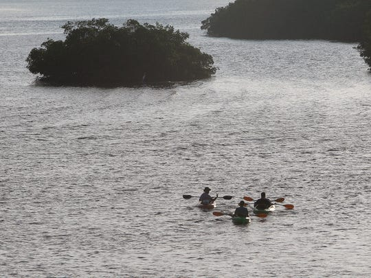 A kayak tour heads out into the Estero Bay Aquatic Preserve on Tuesday 9/6/2016.