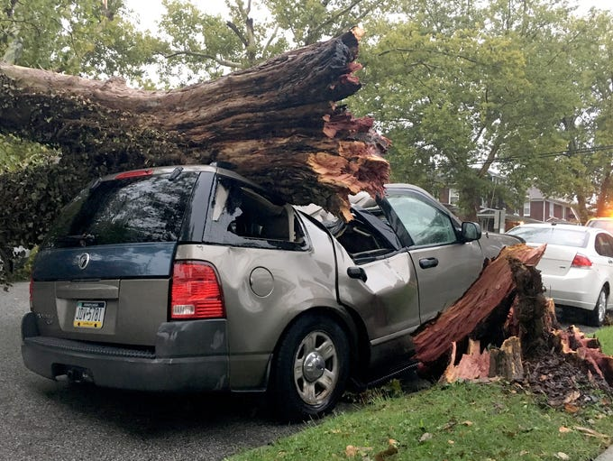 An SUV was crushed by a fallen tree on Midland Ave