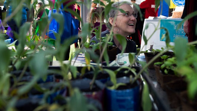 Cyndy Pappaterra of Moorestown browses Jerusalem artichokes and basil from GMO Free New Jersey as Croft Farm hosts Earth Fest Saturday, April 30 in Cherry Hill.