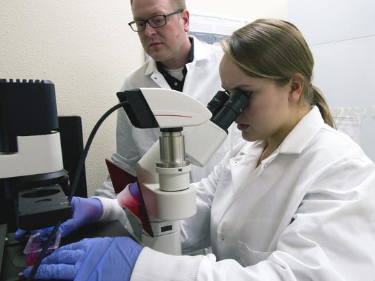 Lakeland College students Jamie Gundlach and Suzette Rosas are working this summer under the tutelage of Lakeland's assistant professor of biochemistry Jered McGivern to take an adult cell, wiping its coded memory clean, then re-programming it to become any kind of cell needed to benefit humanity.
