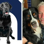 Can this dog hunt? Politicians' pooches send fundraising appeals for owners