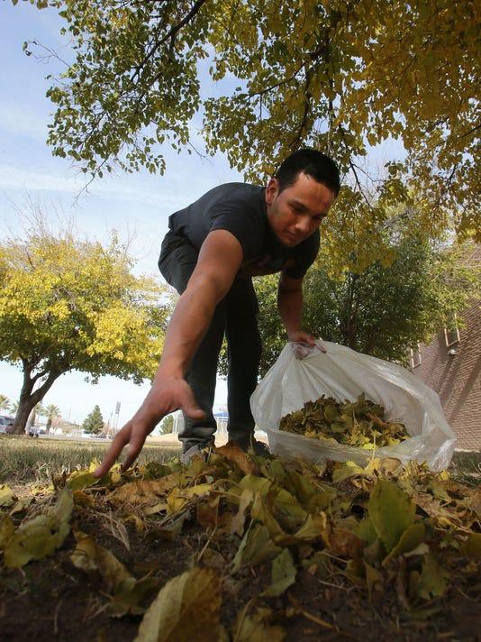 leaf-cleanup-main.jpg