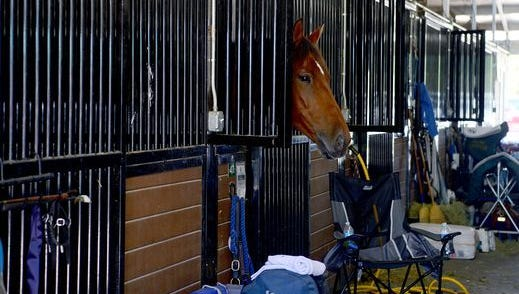 County officials said previous information released to news media by former Buncombe County manager Wanda Greene do not show the accurate payments made to Tryon Equestrian Center in Polk County.