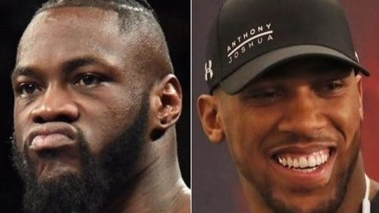 Deontay Wilder's co-manager, Shelly Finkel, said Wilder