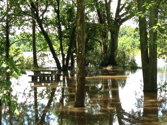 A picnic table is surrounded by floodwater from the Red River on Monday at the Boyce Recreation Area. The boat launch is closed because the river has reached flood stage and is expected to keep rising to about 38 feet.