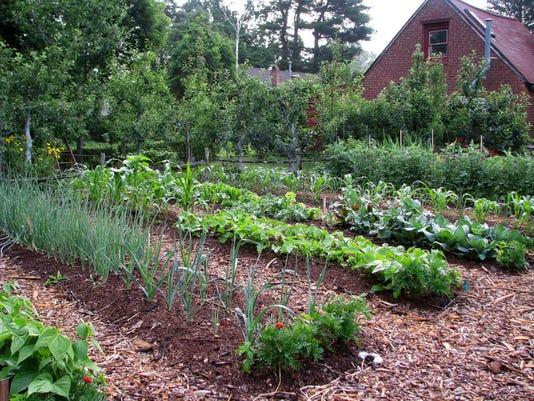 -BC-US--Gardening-Weedless-ref-NYLS373-9804.jpg_20130403.jpg