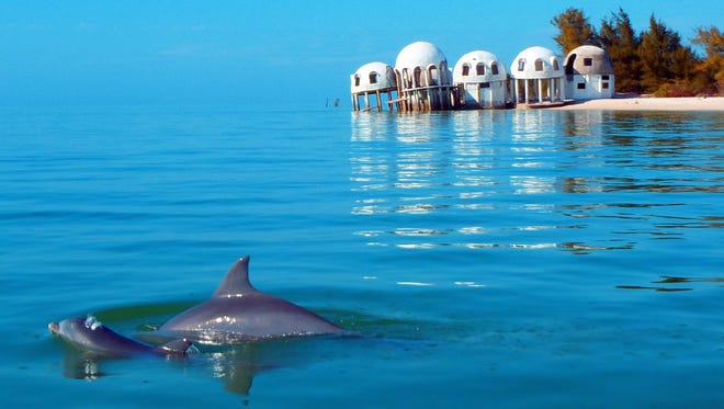 2012. A mother dolphin and her calf swim near the remains of the dome home off Cape Romano, Fla.