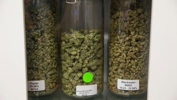 NJ marijuana legalization: Our journalists talk California, Colorado legal weed trips