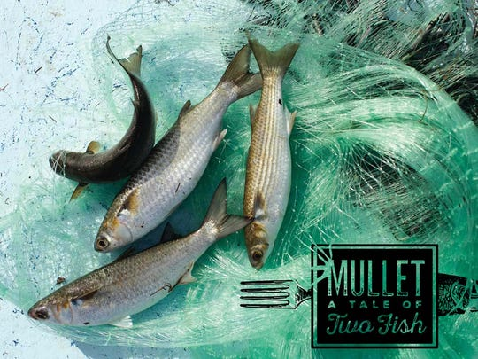 """A promotional image for  """"Mullet: The Tale of Two Fish"""""""