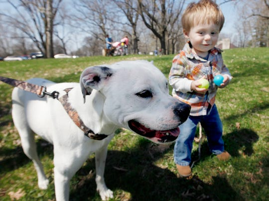 Dogs and their families are invited to the sixth annual Dog-Diggity Easter Egg Hunt on Saturday, April 20, at Heekin Park.