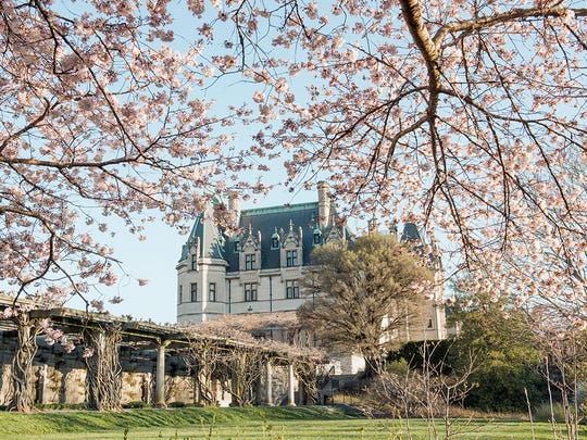 Tree blossoms are among the first signs of spring during the Biltmore Blooms celebration, as seen in this March 2016 photo