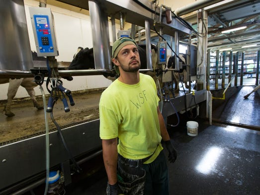 An inmate named Cody works in the milking parlor at
