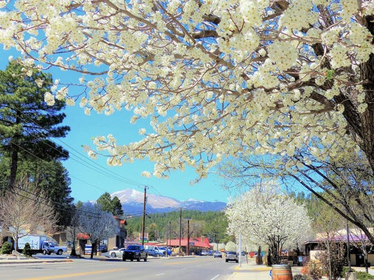 Sudderth Drive in upper midtownRuidoso is rimmed with blossoming pointing to Sierra Blanca Peak in the distance.