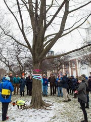 Burlington City Arborist V.J. Comai, right in tan pants, leads a tour of trees in City Hall Park on Friday, March 2, 2018.  A plan to cut down many of the trees in the park as part of a redesign of the space has drawn opposition from some residents.