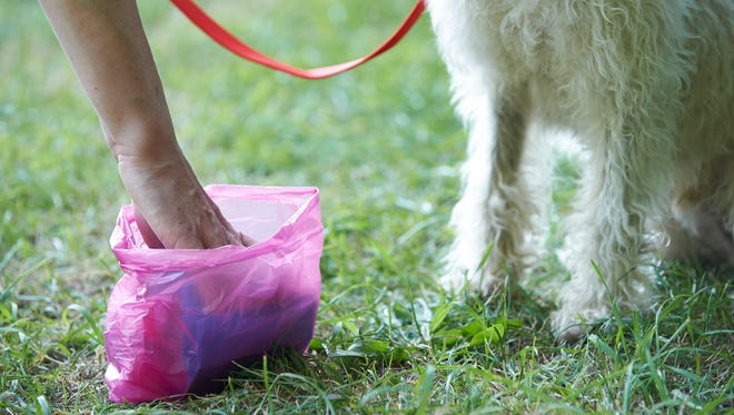 Residents are asked to pledge to clean up after their pets to keep streams clean.