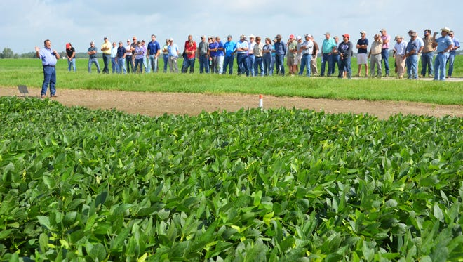 LSU AgCenter soybean specialist Ron Levy, far left, talks at the Acadia Parish Rice and Soybean Field Day on June 15 about research he is conducting to reduce seeding rates. Levy said soybean prices have increased recently.