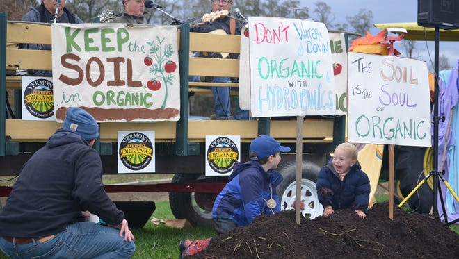 Children play in a pile in compost at the Rally in the Valley in Thetford on Oct. 30, 2016. The rally was held by supporters who say organic labels should apply only to produce grown in soil, and exclude hydroponically grown food.