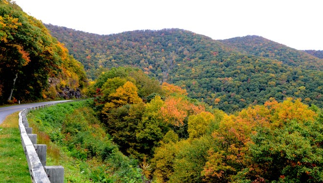 Leaves start to change on the Blue Ridge Parkway in 2015 at the Lane Pinnacle overlook north of Asheville.