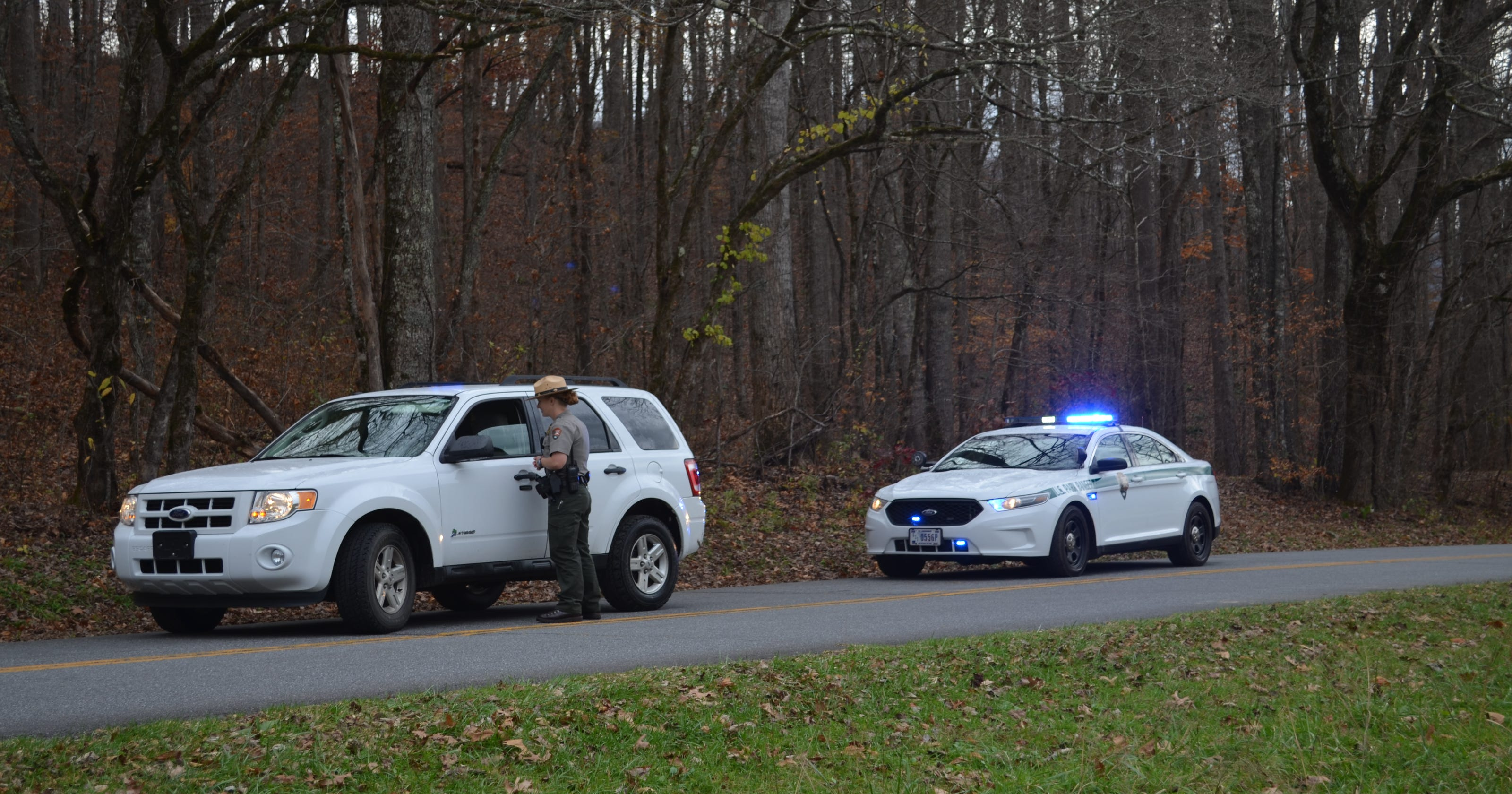 Man dies in collision in Great Smokies in 4th fatality this year