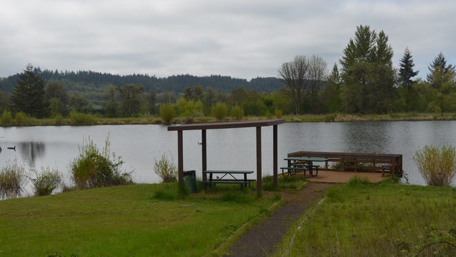 It's a relatively easy, flat walk from the parking lot at the South Willamette Watershed District office via an accessible gravel trail to the fishing platform at Adair Pond.