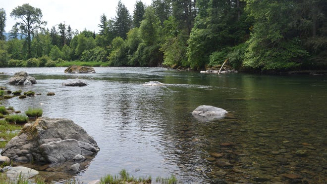 You can chill out and take in great views of the North Santiam River, or try your hand at fishing at the North Santiam State Recreation Area 26 miles east of Salem off Highway 22.