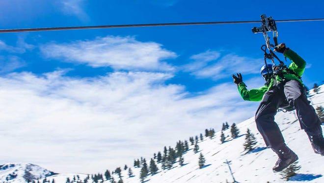 Try the Wind Rider zip-line tour at Ski Apache Resort.
