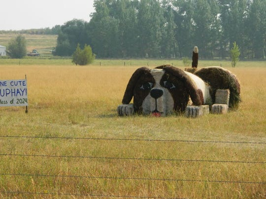 Montana Bale Trail/What the Hay contest: One Cute PupHAY! - Hobson Class of 2024.
