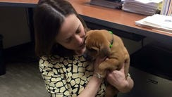 Councilwoman Amy Murray cuddles with an Uber puppy