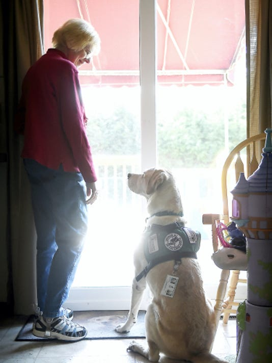 Mary Alice Wagner has suffered from arthritis, Parkinson's disease and lupus. Through it all, TJ, Wagner's service dog, has been beside her. With health issues of his own, the 11-year-old Labrador Retriever needs to retire, and Wagner is working with friends to raise 25,000 for a new service animal.