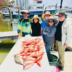 What to fish for now that red snapper season is over