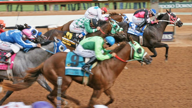 All American Futurity winner and champion Handsome Jack Flash has been retired.