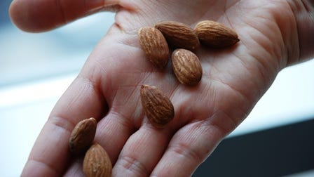Almond photo2